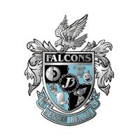 jenson beach falcons logo